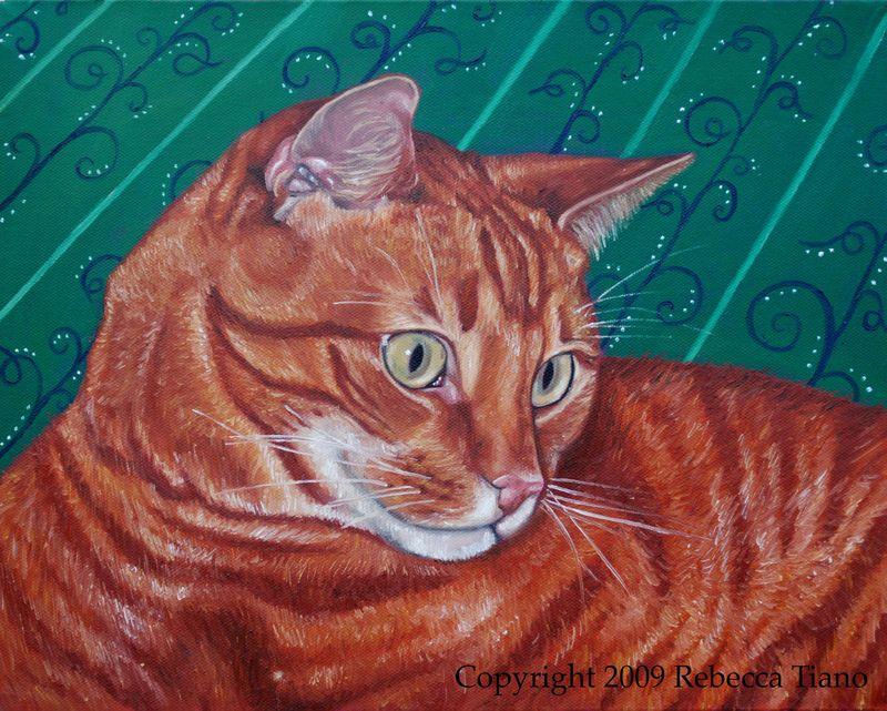 Orangecat2